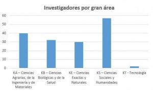 Investigadores por gran área
